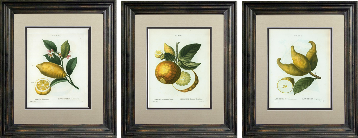 Lemon Art Gallery_1