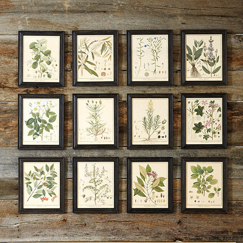 21 Free Botanical Prints Simply Made By Rebecca