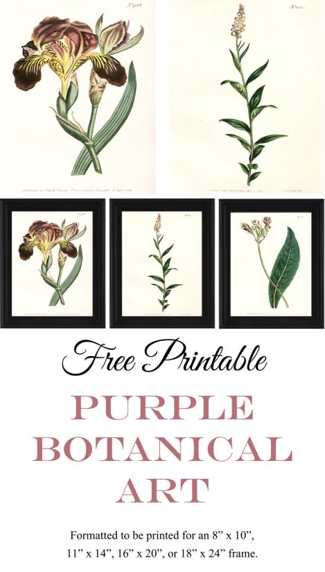 Free Printable Purple Botanical Art