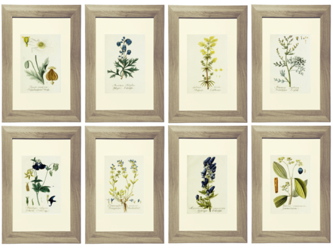 Royal Blue and Yellow Botanical Printable Gallery Wall